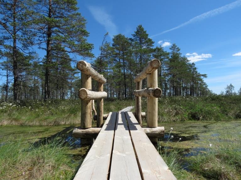 Var izbaudīt arī pāris tiltiņus, kas ved pāri aizdambētajiem novadgrāvjiem