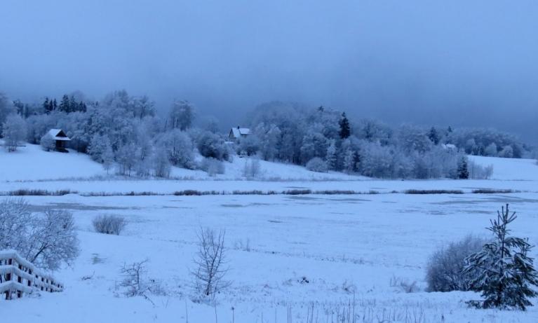 12. februāra rīts- pa nakti piesnigusi  ~7 cm bieza sniega sega.