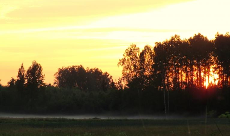 11. jūlija vakars-mierīgs un silts, vēl pēc saulrieta t rāda +20, pļavā dunduri kož kā traki, neļauj baudīt saulrietu.