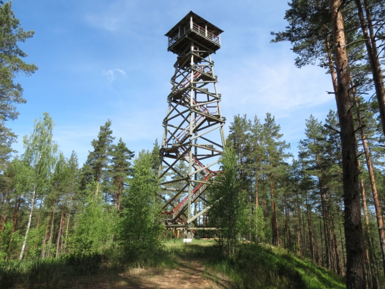 Sak, ka tornis izskatās tik stabils, ka pat bailīgākie uzdrošinās uzkāpt līdz pašai augšējai platformai, no kuras paveras plašs skats uz Latvijas mežiem.