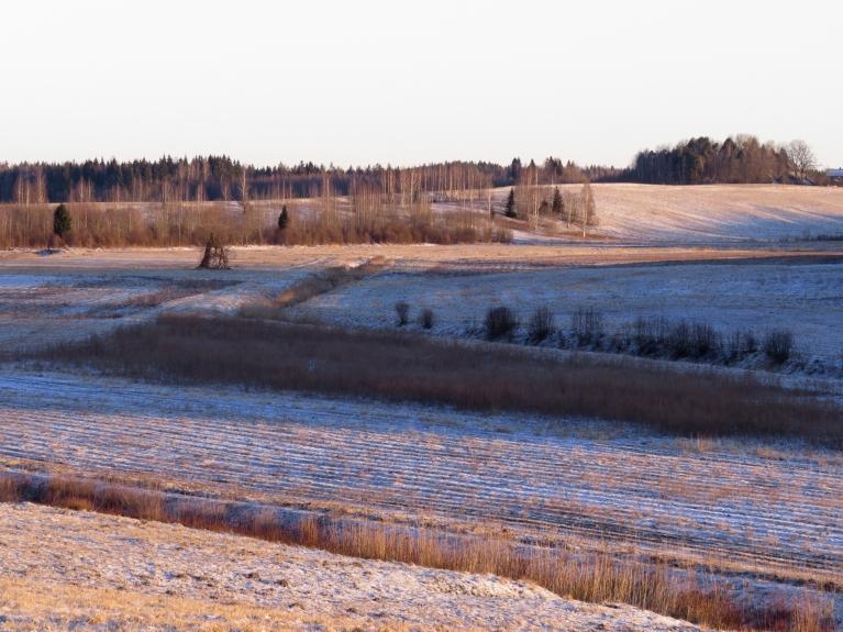 Neskatoties uz to, ka vakar visu dienu nedaudz sniga, baltumiņš uz zemes ir pavisam niecīgā kārtiņā.