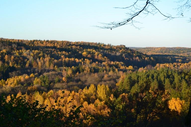 Uzkāpjot Paradīzes jeb Gleznotāju kalnā, pievakarē ainava ir ne mazāk skaista.