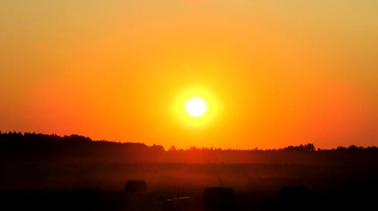 Saule cepina līdz pat pašam vakaram.