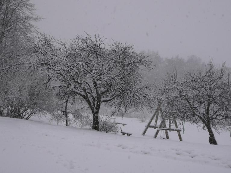 Autors: Migla. 11.01.2012. Allaži 13.00. Par šādu skatu rīdzenieki un to kaimiņi var tikai sapņot.