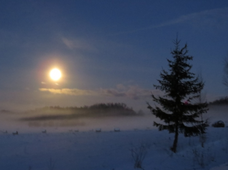Septiņos no rīta migla vēl tikai veidojas ielejas zemākajās vietās