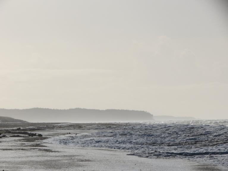 5.02. Dūmakainā pludmale