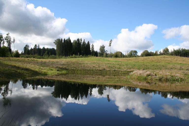 2010. Spoguļattēls.