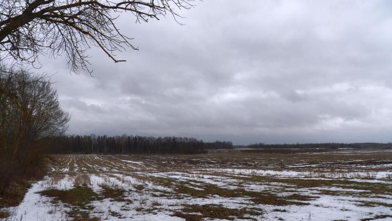 Foto: Pierobežā. Kaji lauki praktiski bez sniega, Medņevas pag., 18.01.