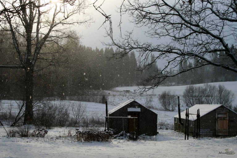 13.01. Otrais sniedziņš.