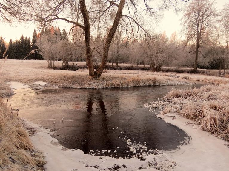 Tumšupītes mierīgākajās vietās sāk veidoties ledus