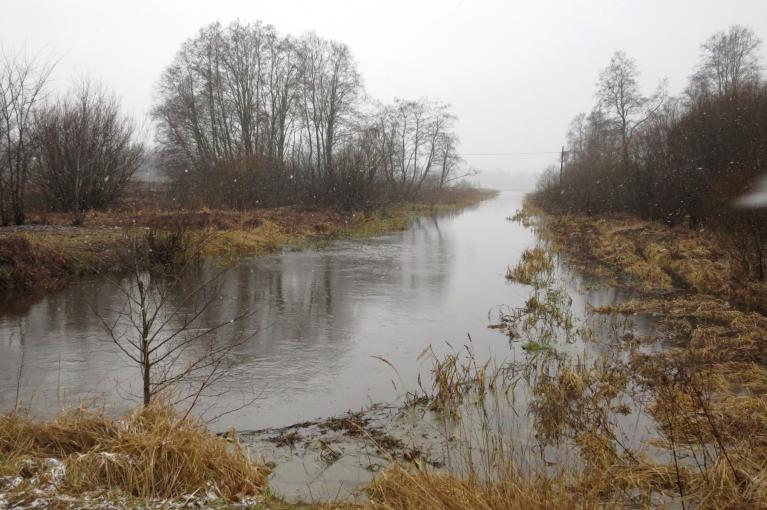 12. janvāra rītā saprotam, ka par agru sapriecājamies, sniegs nokusis, upītē ūdens līmenis pamatīgi cēlies.
