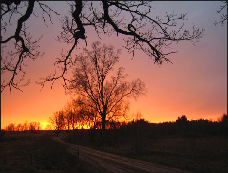 Autors: ilga123. Skaists saulriets Kumenē (pie Lietuvas robežas). 23.04.
