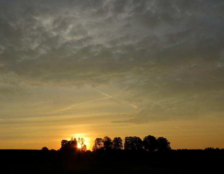 21. augusta saullēkts.