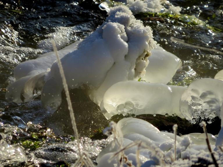 Aukstais laiks saražojis skaistas ledus skulptūras.