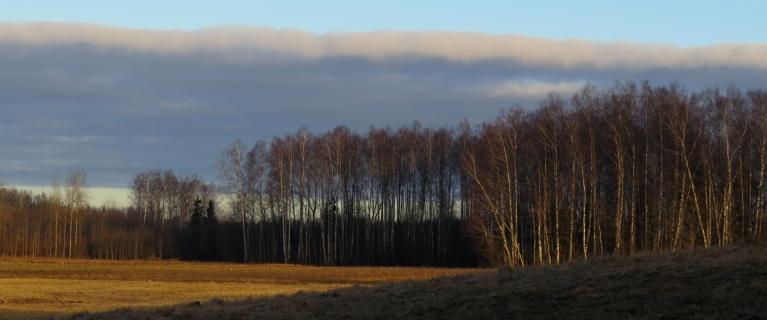 Foto: Migla. Interesanta mākoņu josliņa (12.03.)