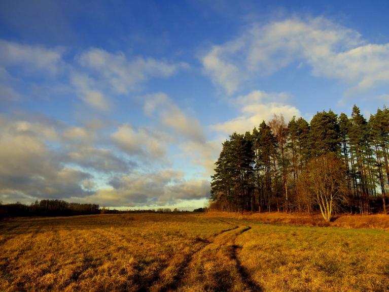 8. decembris ir viena no saulainākām dekādes dienām.