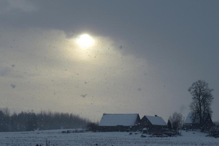 """7. decembra priekšpusdiena- """"ziemas priekšvēstneši""""- sniegs un neliels putenītis- ir klāt."""