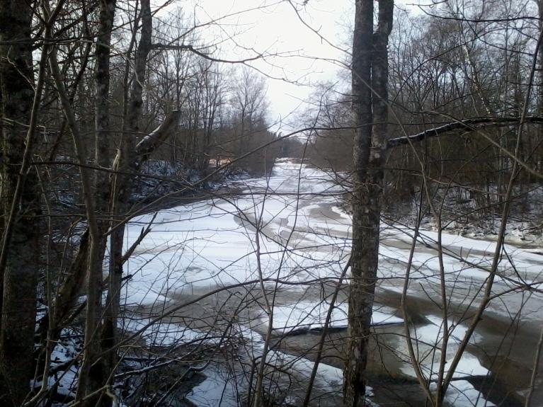 Dažviet kur lēnāka straume ledus nav pat lāgā izkustējies.