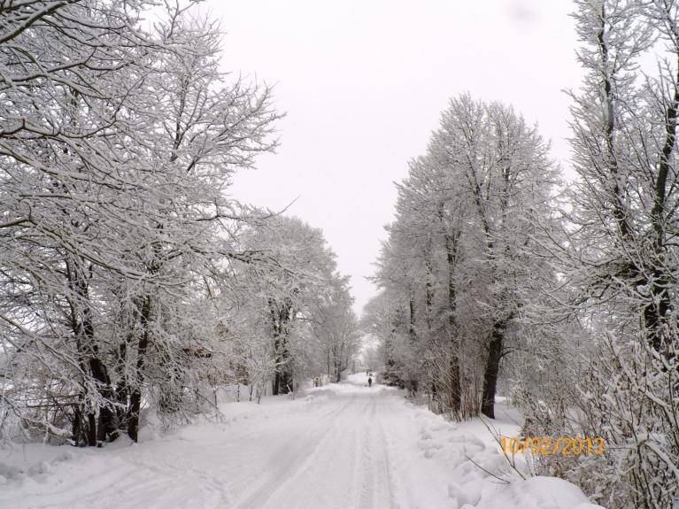 Sniegotais februāris (Viļaka)