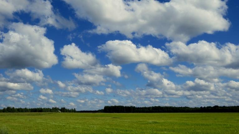 Rīta pusē debesīs vēl ganījās pa kādai mākoņu aitiņai.