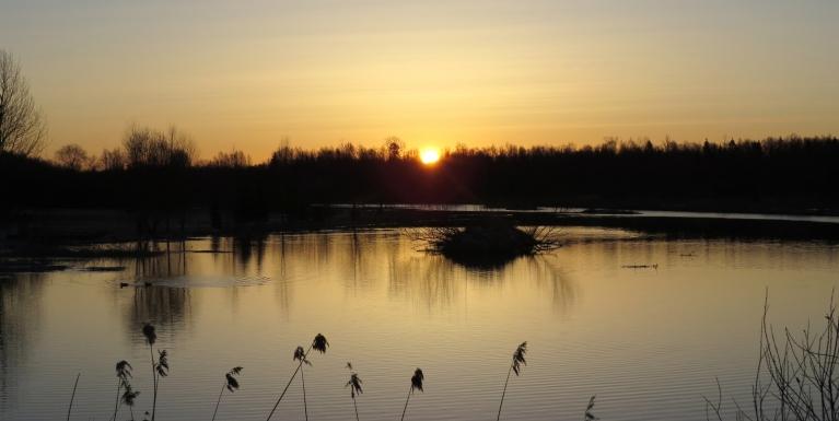 Šodien ūdens diena- saullēktu sagaidu pie dīķa Allažmuižā.