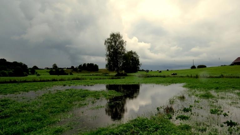 Ielejas pļava pamazām pārvēršas mazā dīķītī.