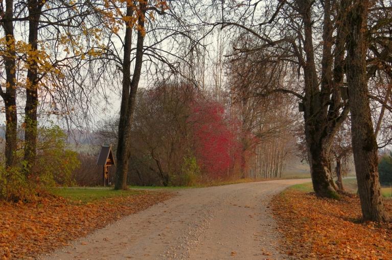 1. novembris- ievērojami siltāks par iepriekšējo dienu.