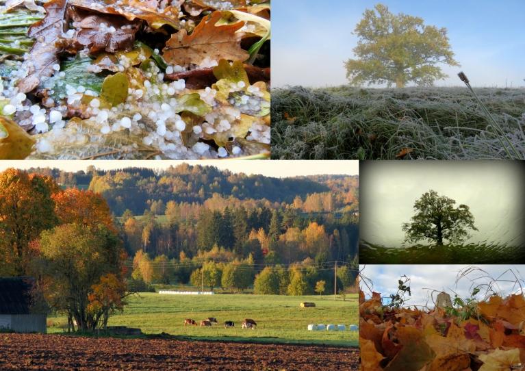 Oktobris. Aukstākais rīts 13.10. -7°, siltākā diena 01.10. +15°.
