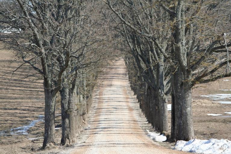 Ceļš uz Kārļiem