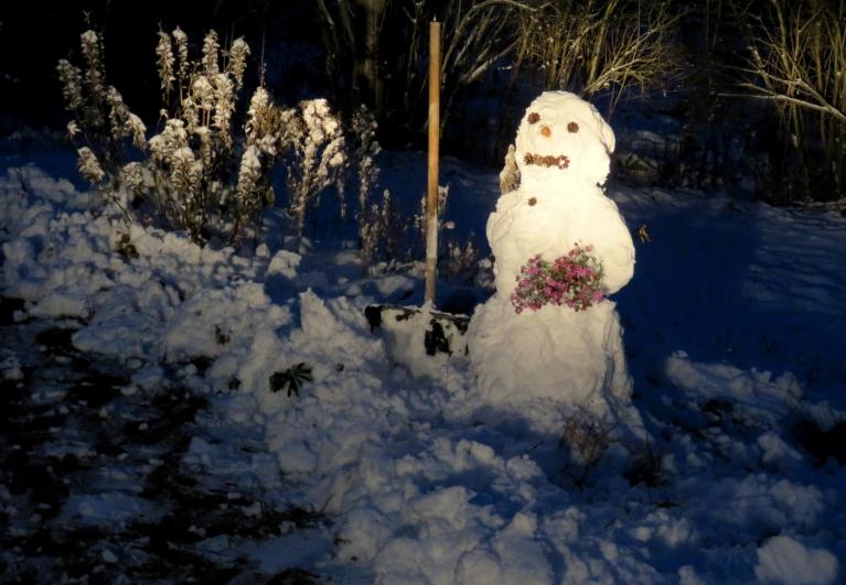 Snigšana sākās 1. novembra vakarā, 2. novembra rītā jau pirmā sniega tīrīšana un pirmais saveltais sniegavīriņš.