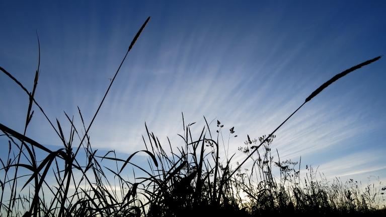Foto: Migla. Savādās vakara debesis (1.07.)