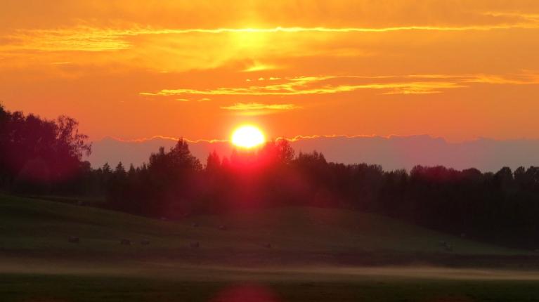 Saule noslīd aiz meža un iegrimst mākonīšos.
