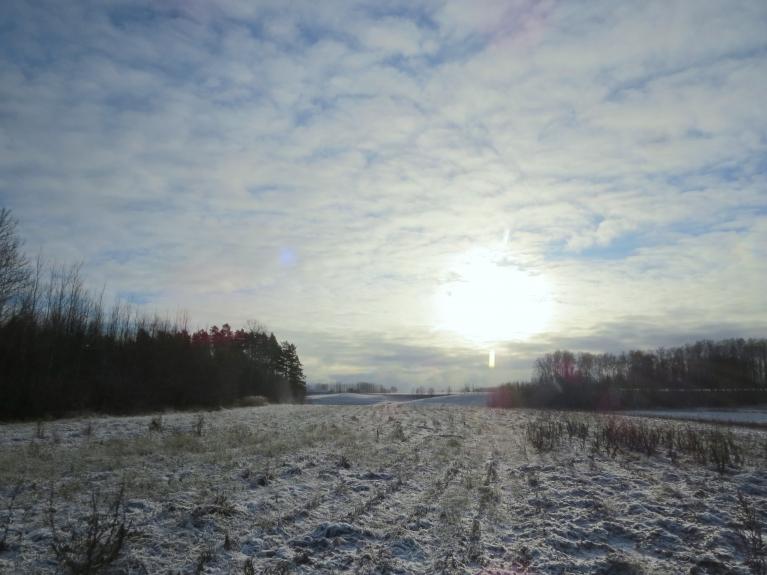 Brīžam no debesīm krīt mikroskopiskas sniega pārsliņas.