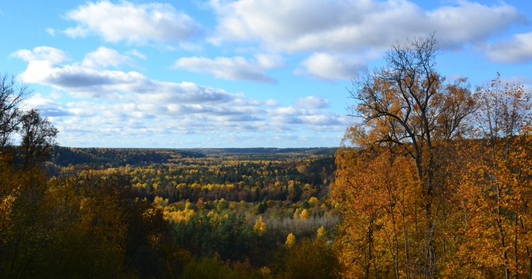 Agrā pēcpusdienā ierodos Siguldā, kur zelta rudens baudāms plašos skatos pār Gaujas ieleju.