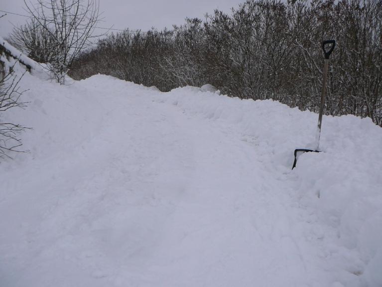 Sniegu savā iebraucamajā ceļā tīru vairākas reizes dienā