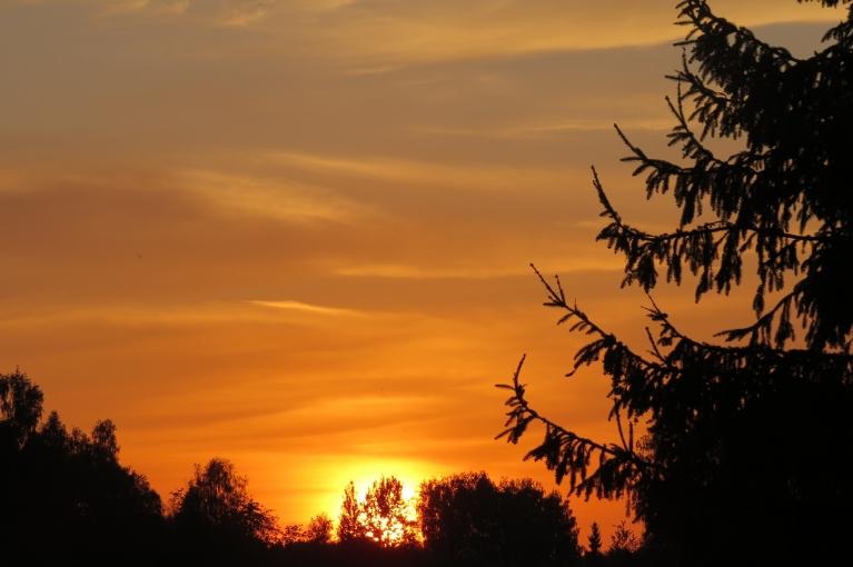 Saule noriet sarkanīgos mākonīšos. Solīto negaisu tā arī nesagaidīju.