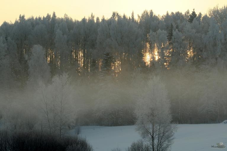 13. janvāris, no rīta -18, dienā -14.