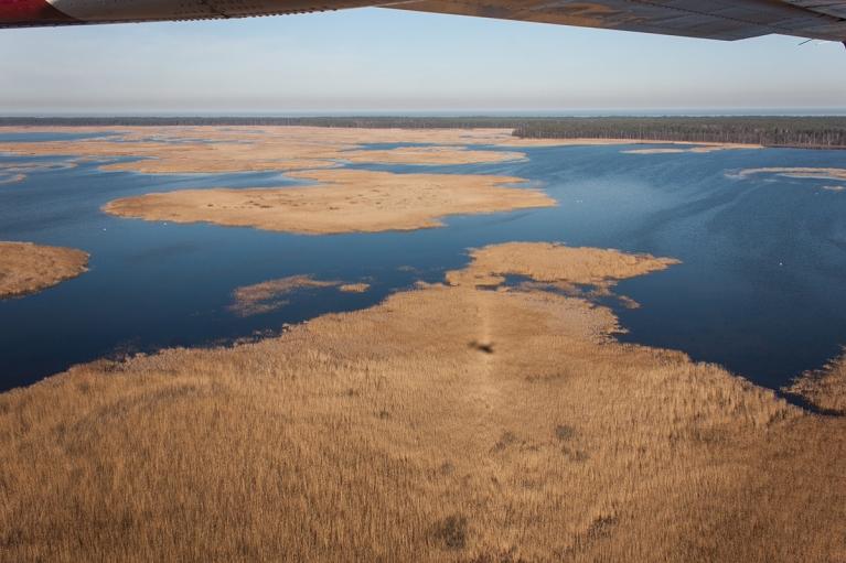 Virs Engures ezera