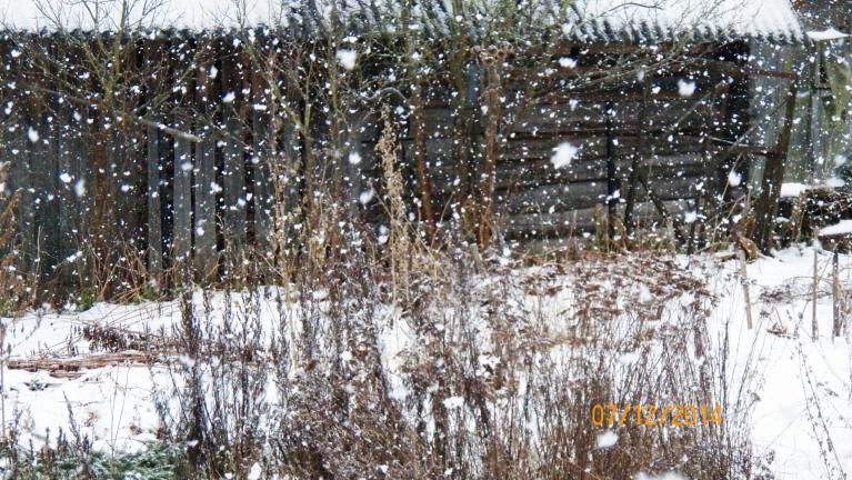 Šitā šodien sniga kādu brīdi...
