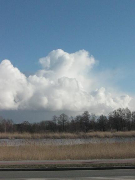 Foto: Mārča (latvju spānis). Gubumākoņu parāde virs Liepājas ezera (05.03.)