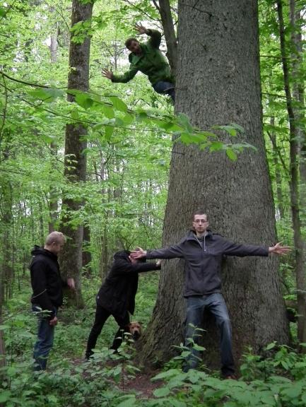 Lielākā egle Baltijā. Attēlā neesmu redzams es, jo fotografēju.