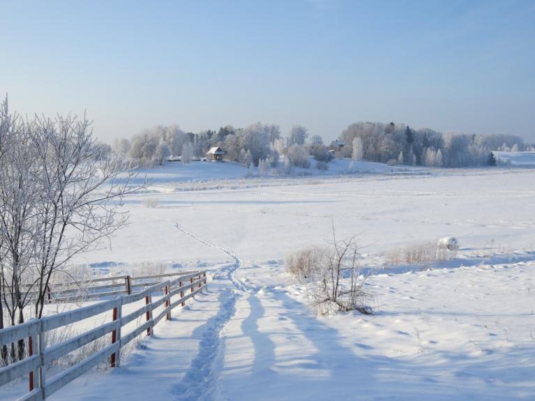 Mirdzošs sniegs, sarmas pilni koki un zilas debesis- kas var būt labāks par šo!