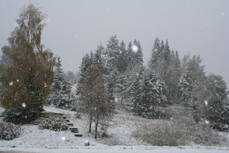 13.10.2010. Brežģa kalns.
