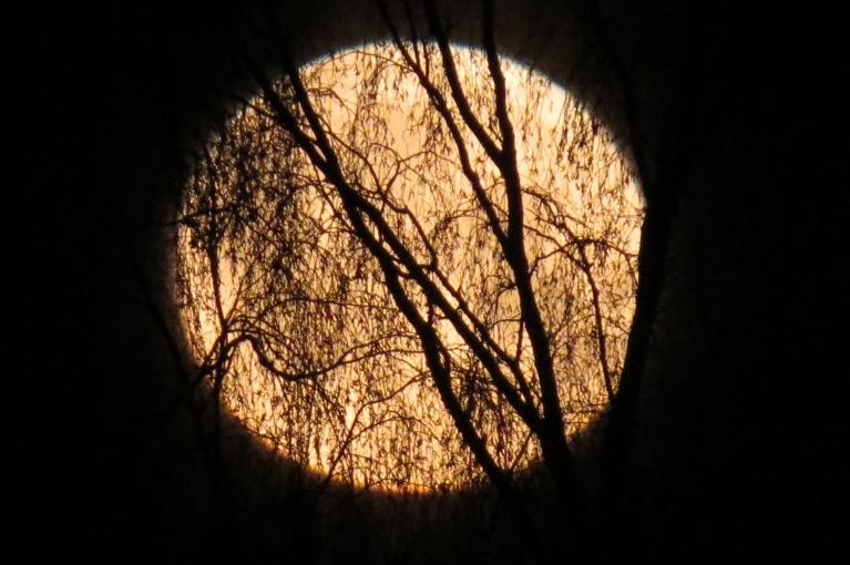16. janvārā rītā -12 un apaļš pilnmēness.