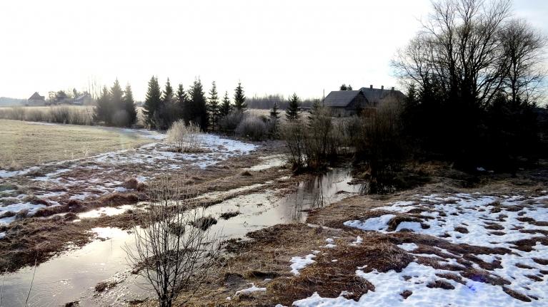 6. marta rīts- auksts, ar nelielu sarmiņu.
