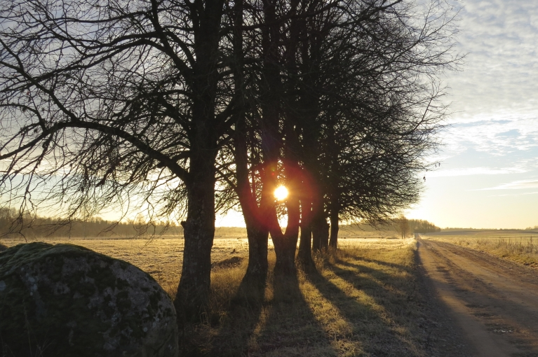 18. novembris - vēss, bet saulains.