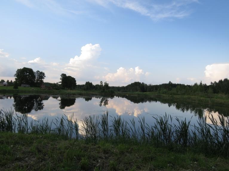 Silta, mierīga novakare pie viena no daudzajiem Tumšupes dīķiem