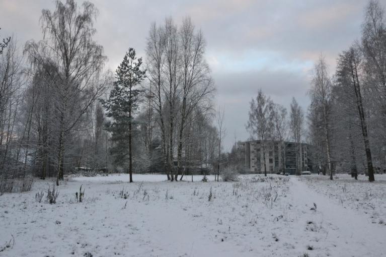 Savukārt, 24. novembra rītā sniega sega jau ir 3 cm. Tā noturas vien dažas dienas, vēlāk izkūst. Tāds nu šogad ir tas novembris...