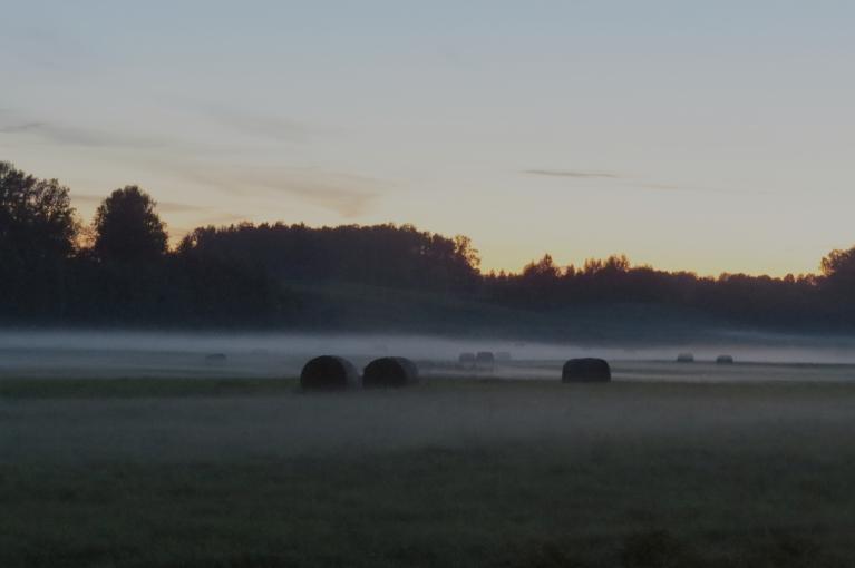 8. septembra vakars- saule norietējusi, virs upītes sabiezējusi migla.