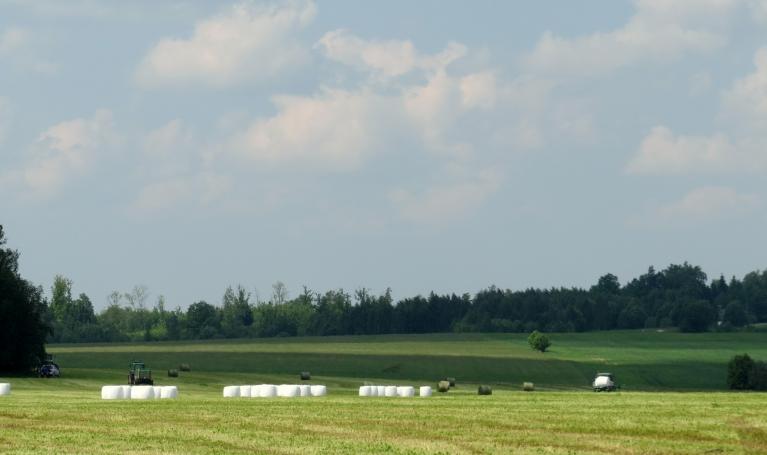 Zemnieki uzsākuši siena un skābsiena sagatavošanu nākošā gada ziemai.